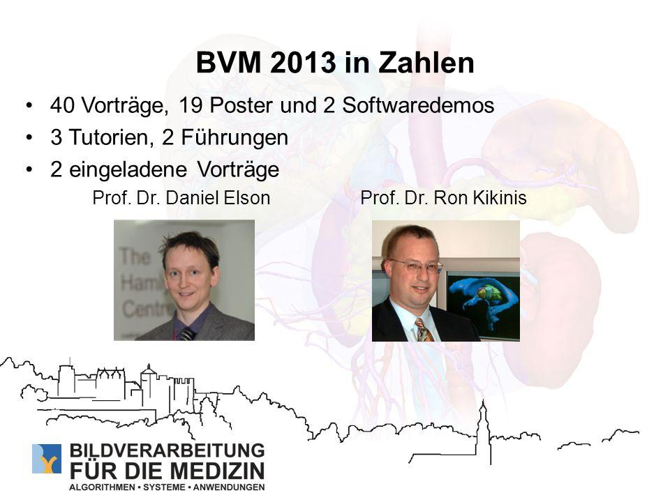 BVM 2013 in Zahlen 40 Vorträge, 19 Poster und 2 Softwaredemos
