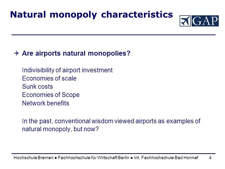 Natural monopoly characteristics