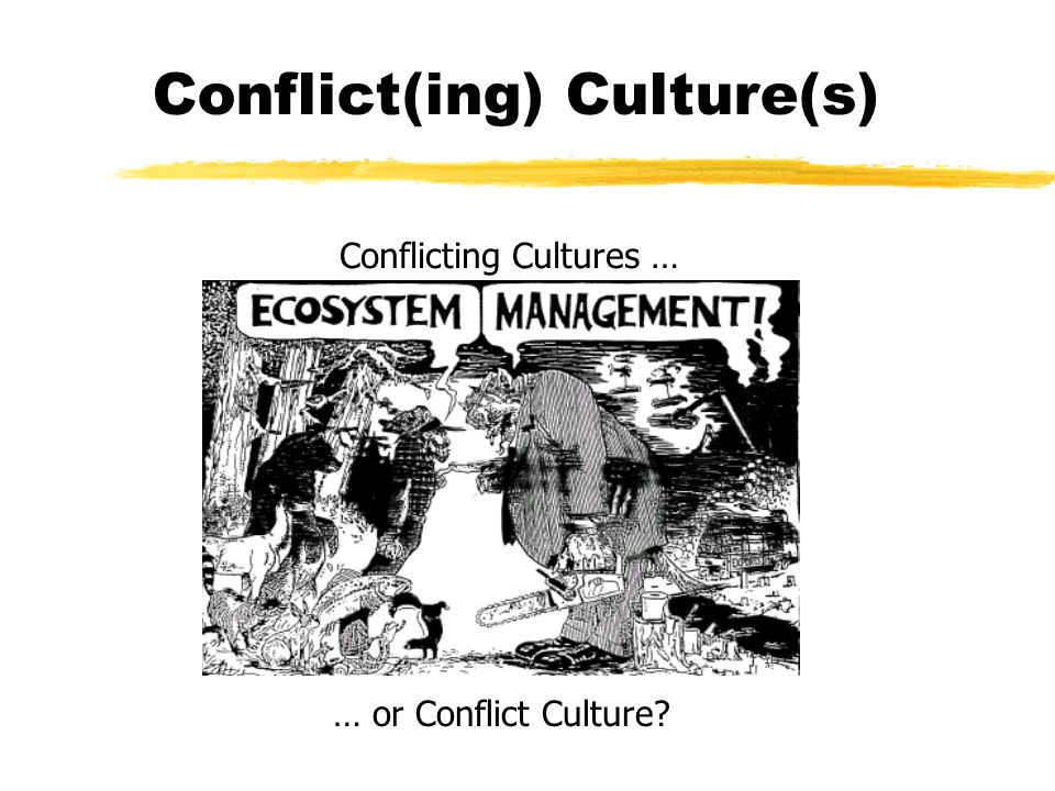 Conflict(ing) Culture(s)