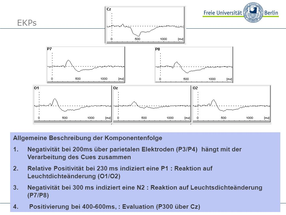 EKPs Allgemeine Beschreibung der Komponentenfolge