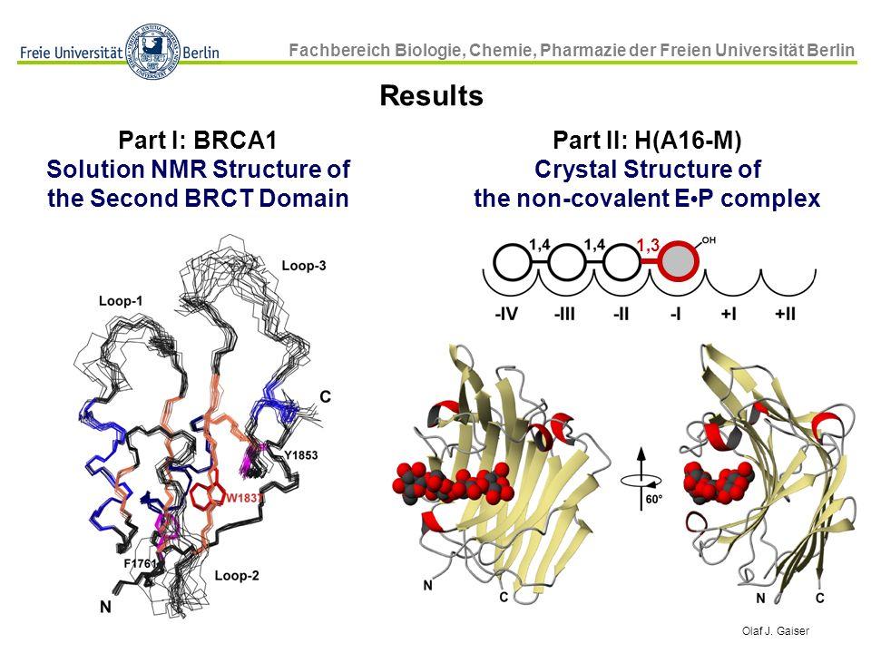 Solution NMR Structure of the non-covalent E•P complex