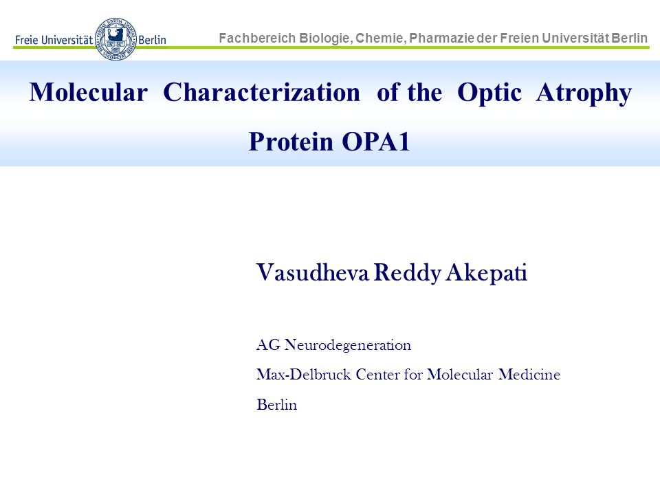 Molecular Characterization of the Optic Atrophy Protein OPA1