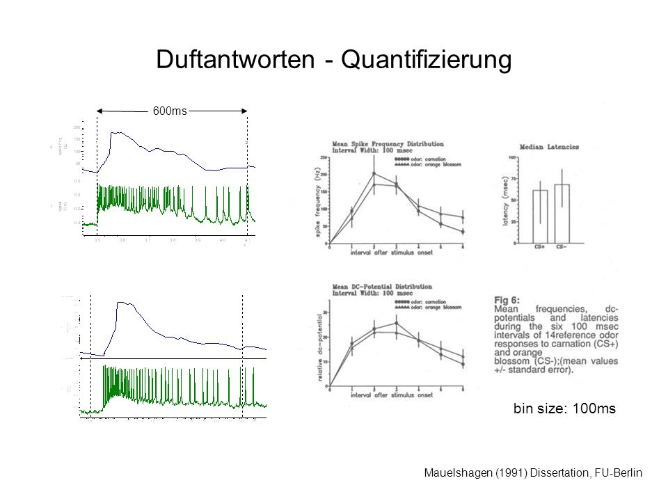 Duftantworten - Quantifizierung