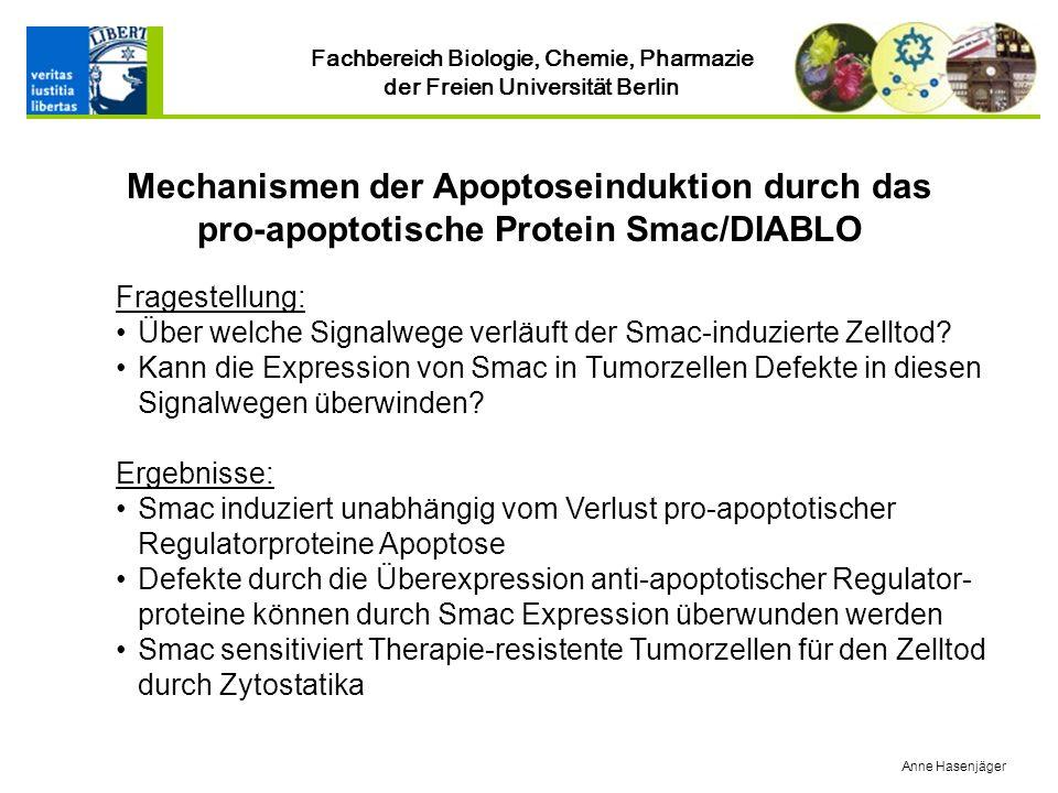 Mechanismen der Apoptoseinduktion durch das pro-apoptotische Protein Smac/DIABLO