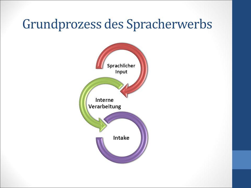 Grundprozess des Spracherwerbs