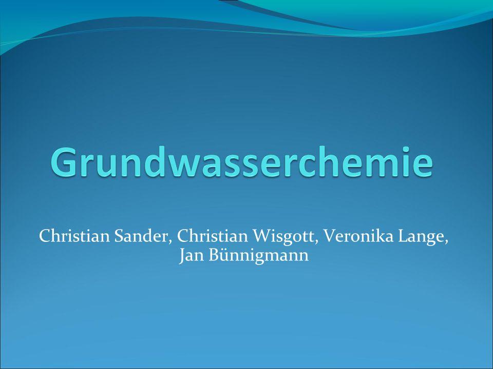 Christian Sander, Christian Wisgott, Veronika Lange, Jan Bünnigmann