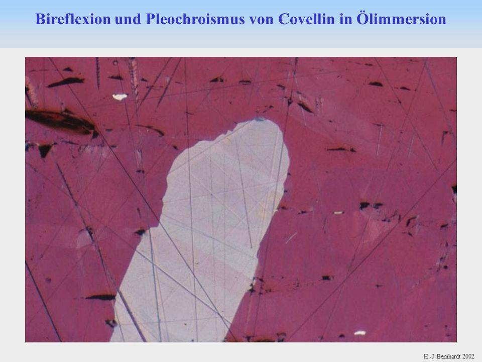 Bireflexion und Pleochroismus von Covellin in Ölimmersion