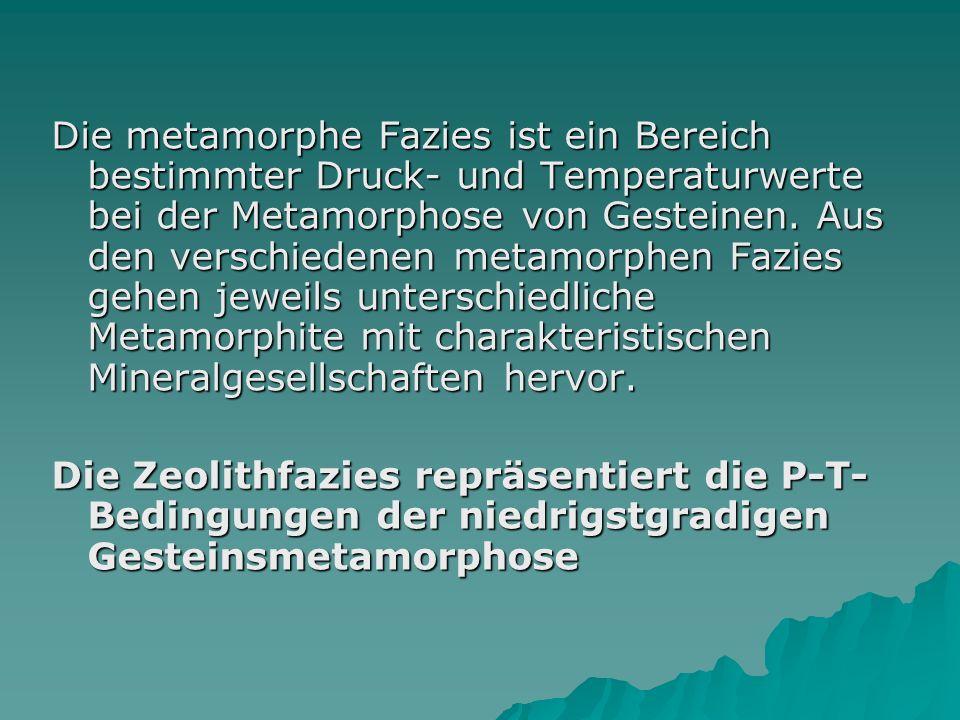 Die metamorphe Fazies ist ein Bereich bestimmter Druck- und Temperaturwerte bei der Metamorphose von Gesteinen. Aus den verschiedenen metamorphen Fazies gehen jeweils unterschiedliche Metamorphite mit charakteristischen Mineralgesellschaften hervor.