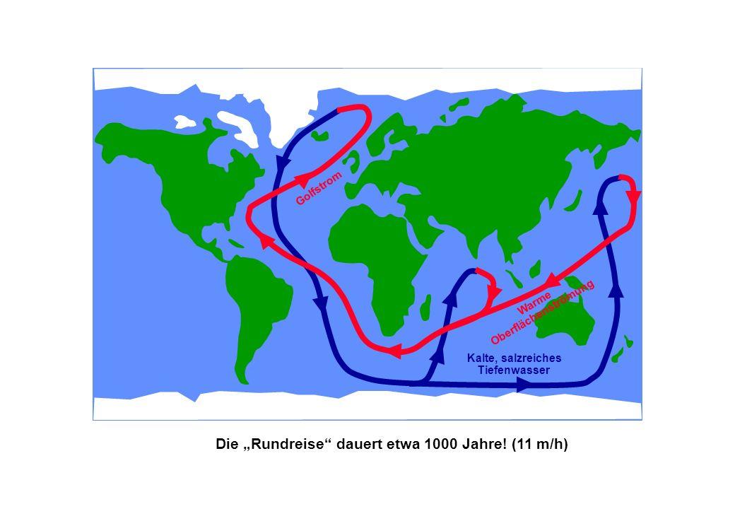 """Die """"Rundreise dauert etwa 1000 Jahre! (11 m/h)"""