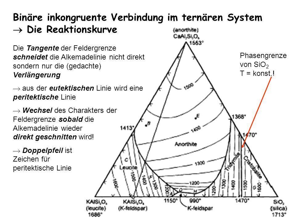 Binäre inkongruente Verbindung im ternären System  Die Reaktionskurve