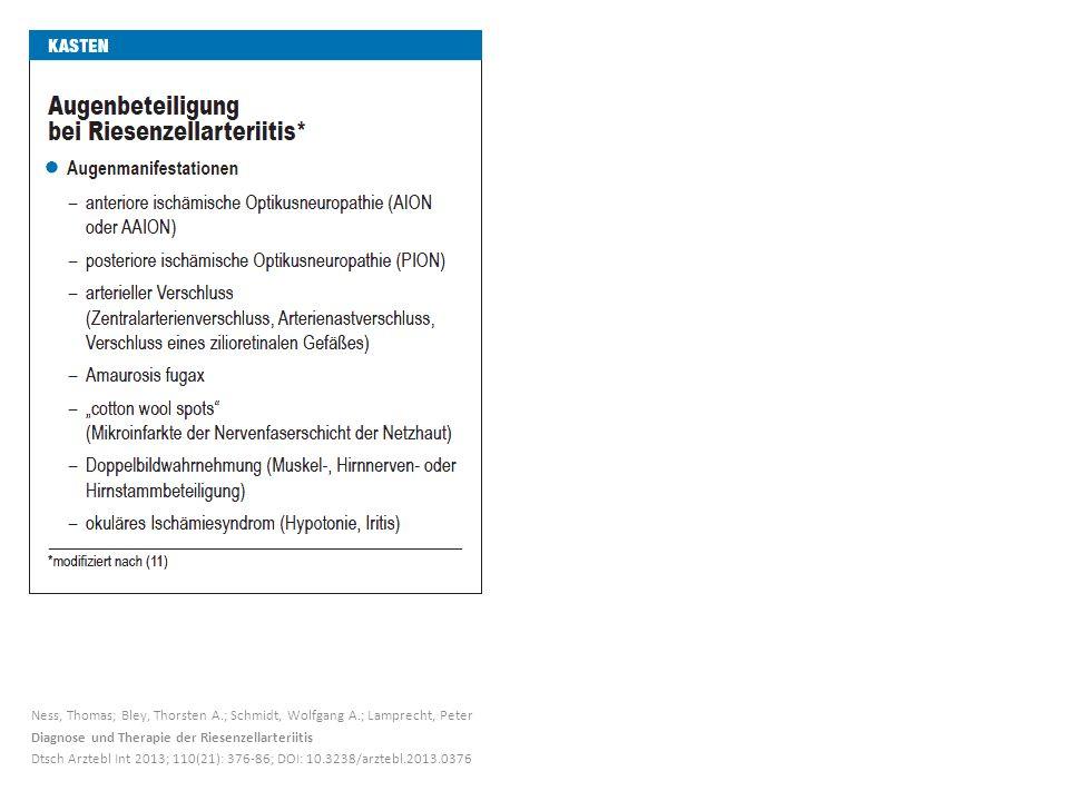 Ness, Thomas; Bley, Thorsten A. ; Schmidt, Wolfgang A
