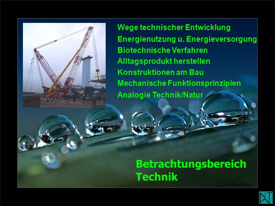 Betrachtungsbereich Technik Wege technischer Entwicklung