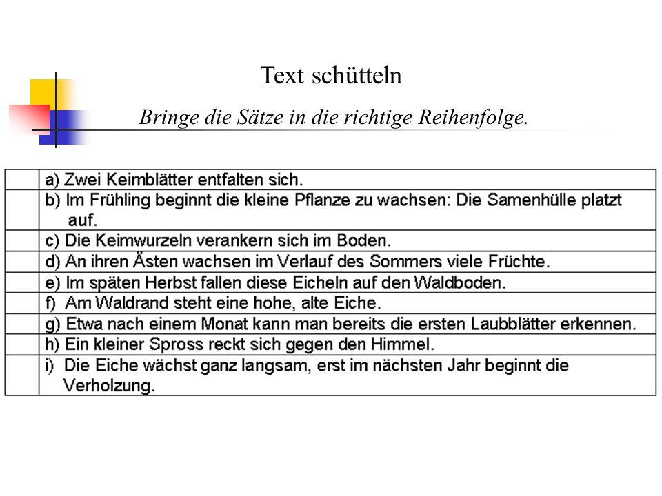 Text schütteln Bringe die Sätze in die richtige Reihenfolge.