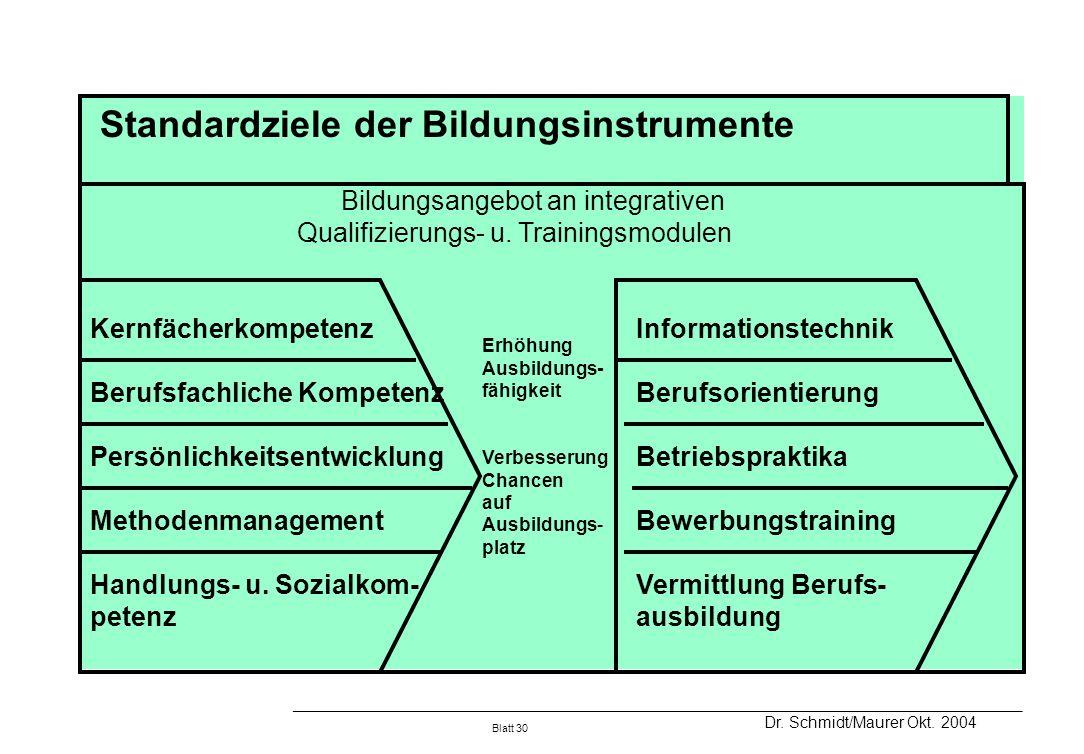 Standardziele der Bildungsinstrumente