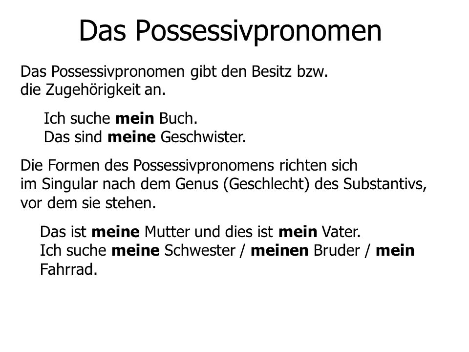 Das Possessivpronomen