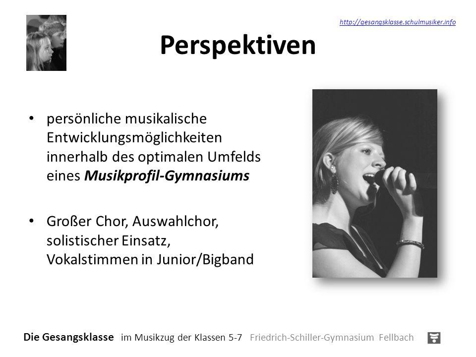 Perspektivenhttp://gesangsklasse.schulmusiker.info.