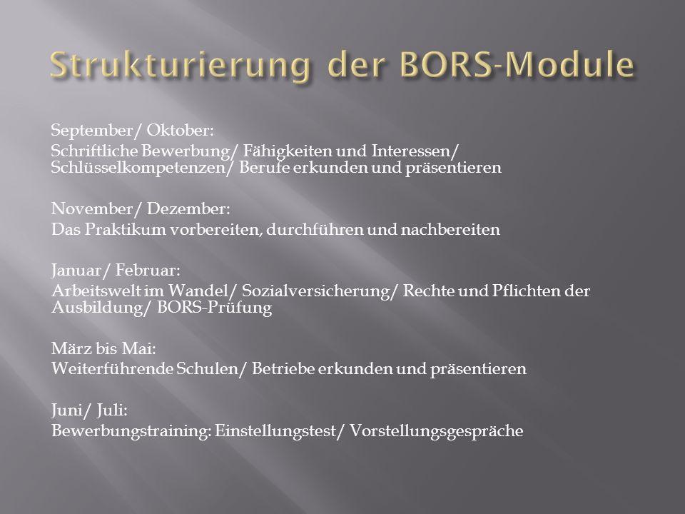 Strukturierung der BORS-Module