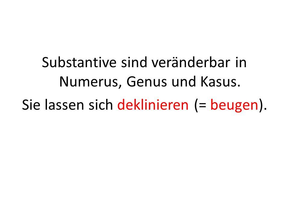 Substantive sind veränderbar in Numerus, Genus und Kasus