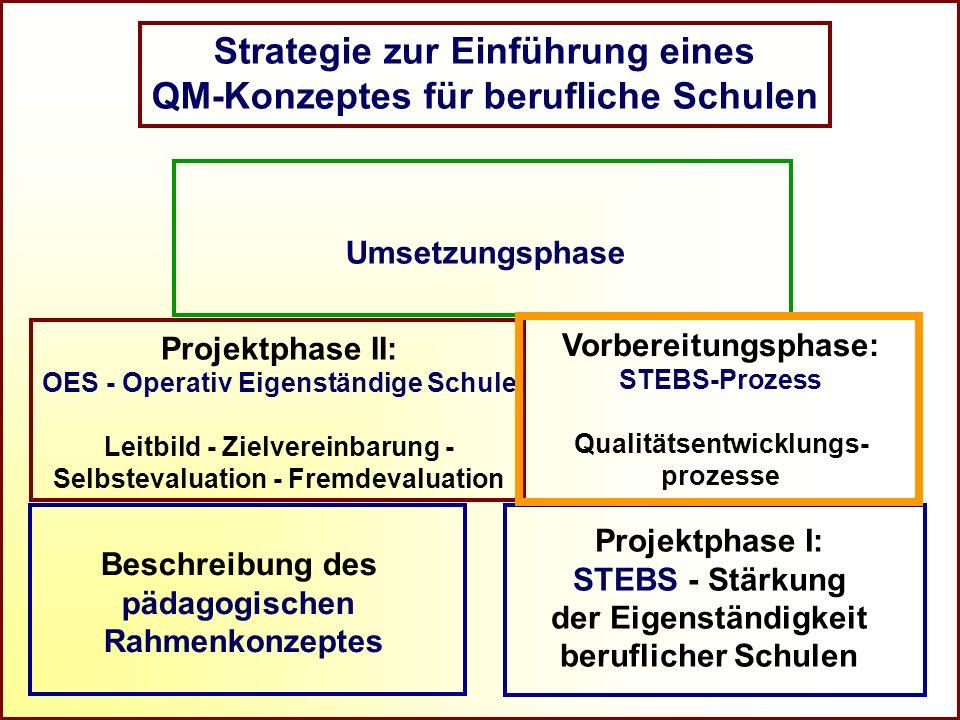 Strategie zur Einführung eines QM-Konzeptes für berufliche Schulen