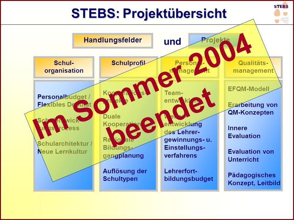 STEBS: Projektübersicht