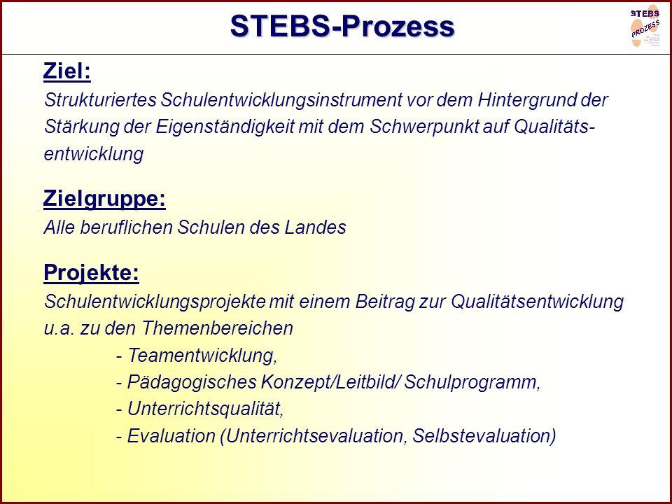 STEBS-Prozess