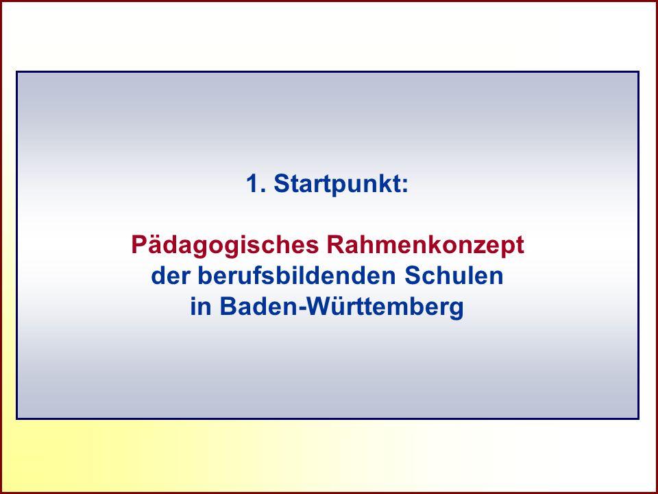 Pädagogisches Rahmenkonzept der berufsbildenden Schulen