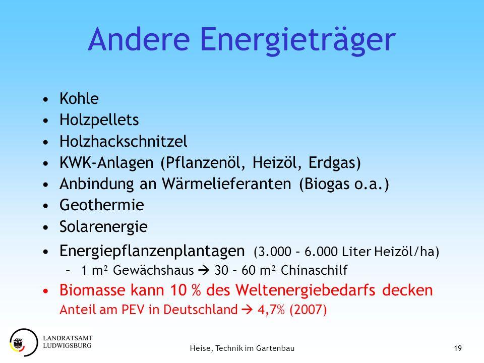 Andere Energieträger Kohle Holzpellets Holzhackschnitzel