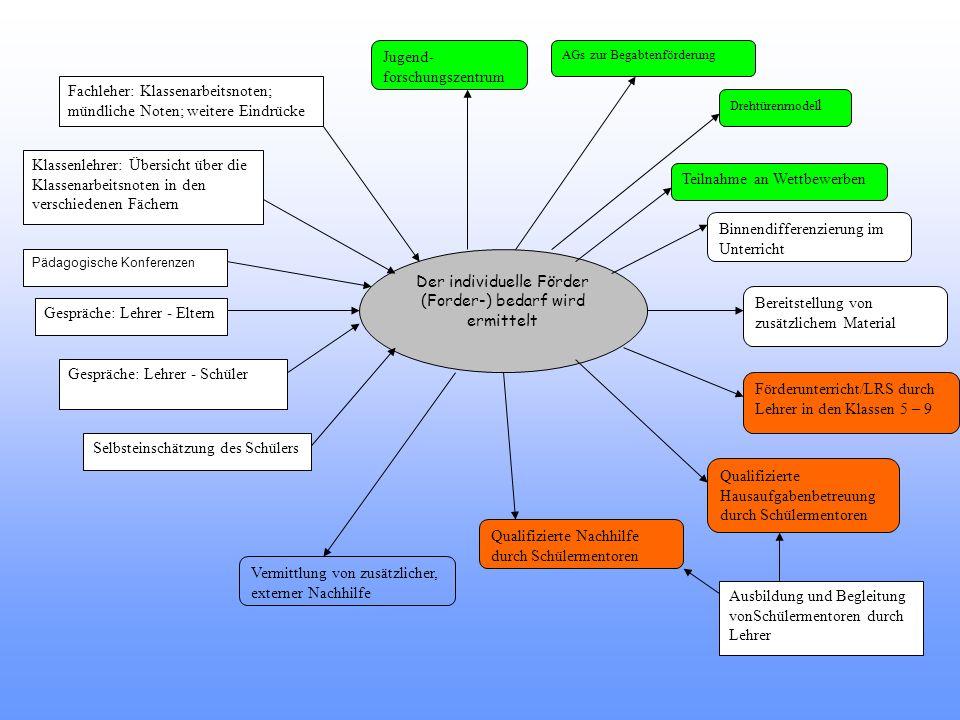 Der individuelle Förder (Forder-) bedarf wird ermittelt