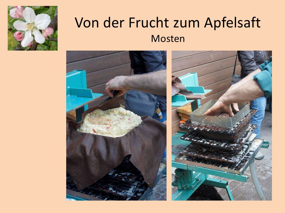 von der frucht zum apfelsaft mosten ppt video online. Black Bedroom Furniture Sets. Home Design Ideas