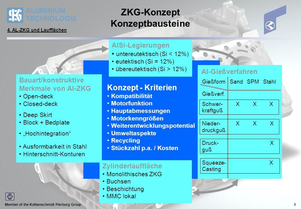 ZKG-Konzept Konzeptbausteine