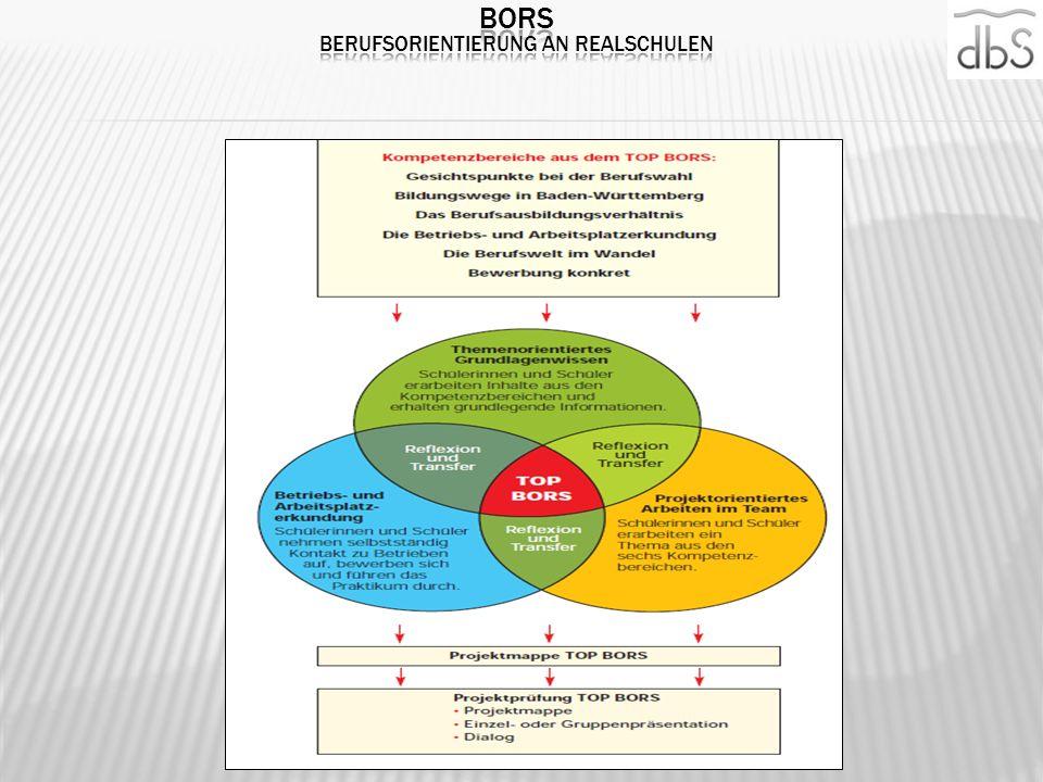 BORS Berufsorientierung an Realschulen