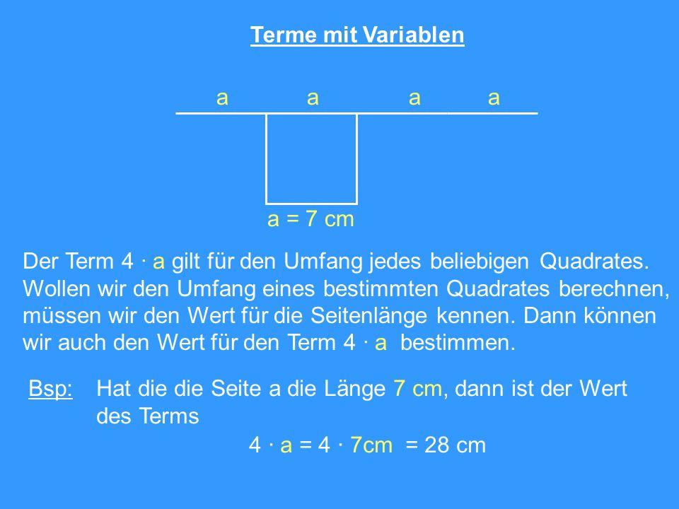 Terme mit Variablen a. a = 7 cm. Der Term 4 · a gilt für den Umfang jedes beliebigen Quadrates.