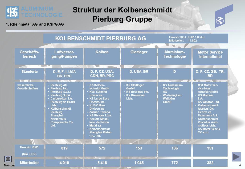 Struktur der Kolbenschmidt Pierburg Gruppe