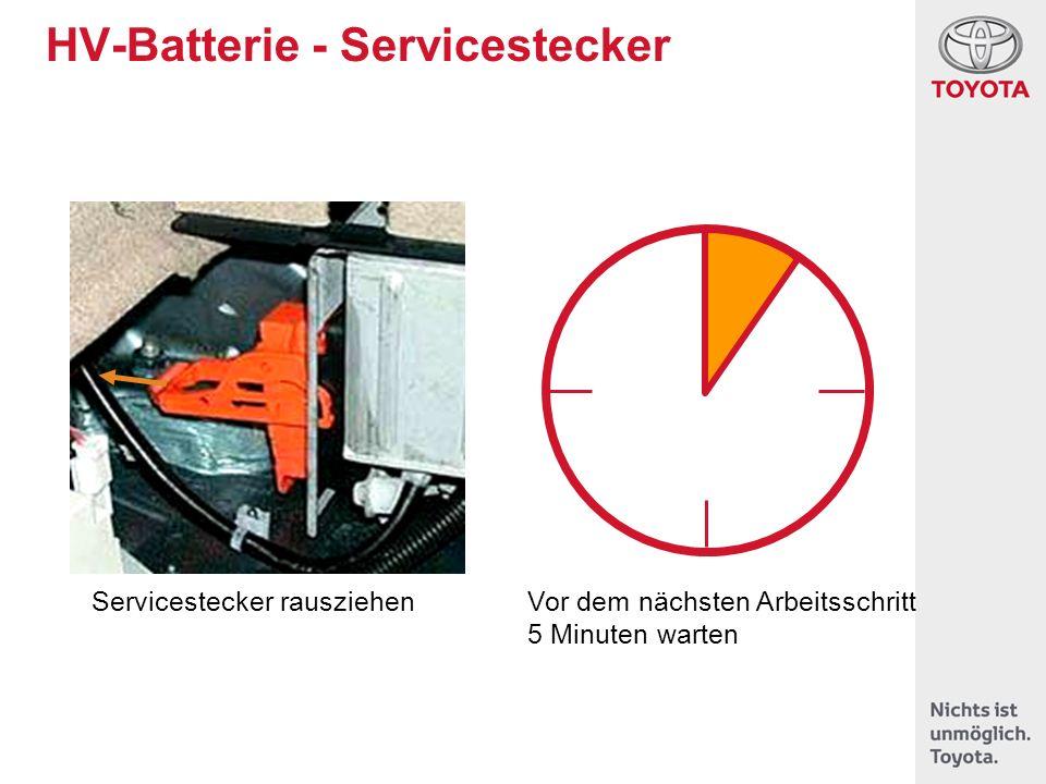 HV-Batterie - Servicestecker