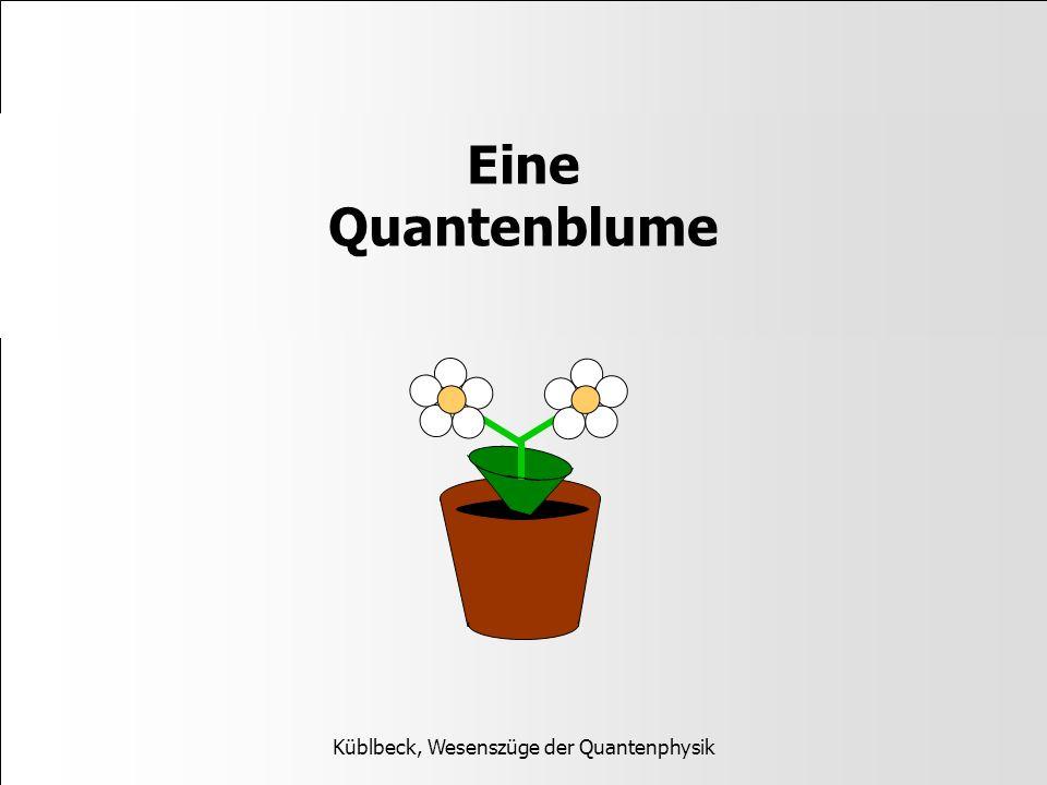 Küblbeck, Wesenszüge der Quantenphysik