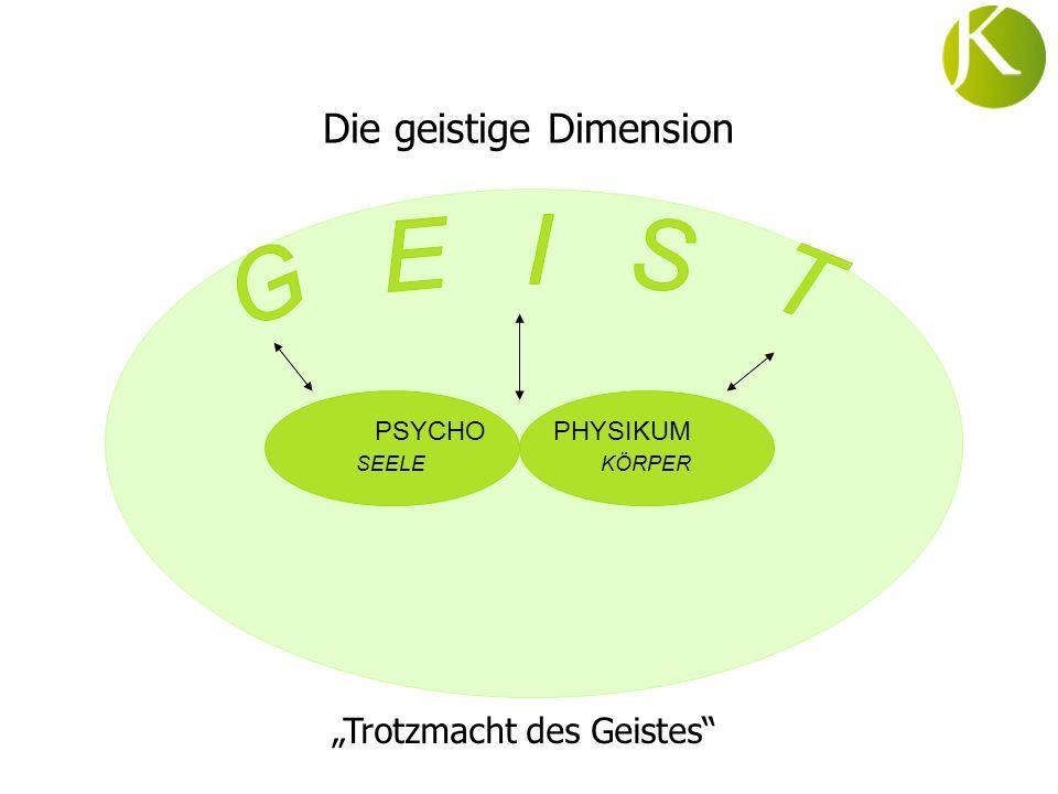 Die geistige Dimension