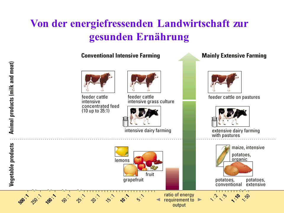 Von der energiefressenden Landwirtschaft zur gesunden Ernährung