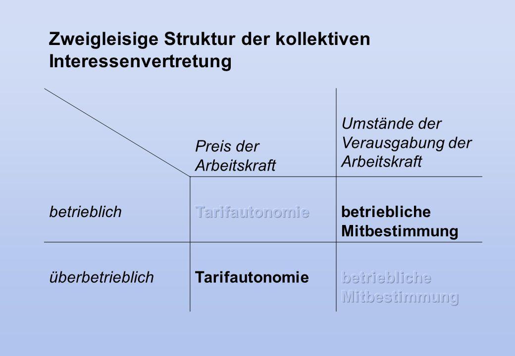 Zweigleisige Struktur der kollektiven Interessenvertretung