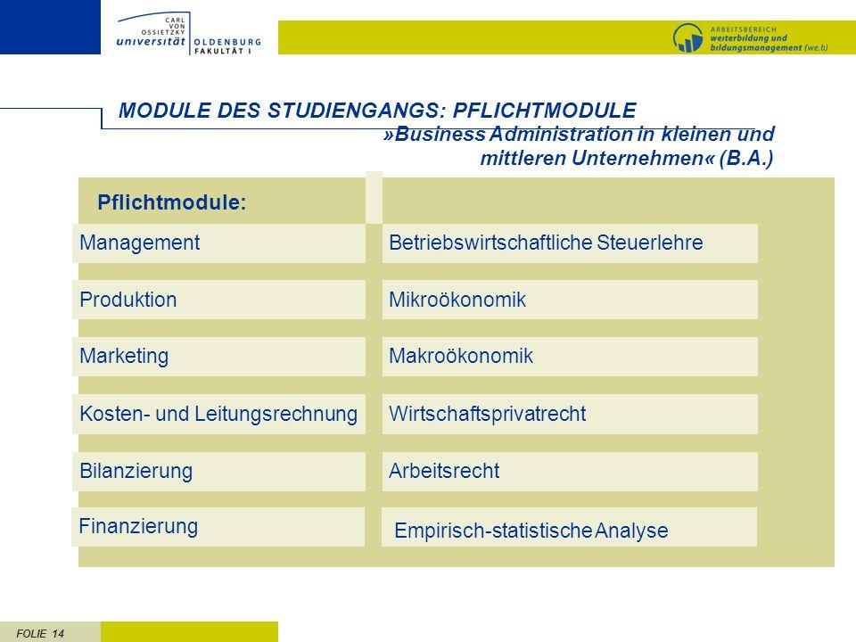 MODULE DES STUDIENGANGS: PFLICHTMODULE