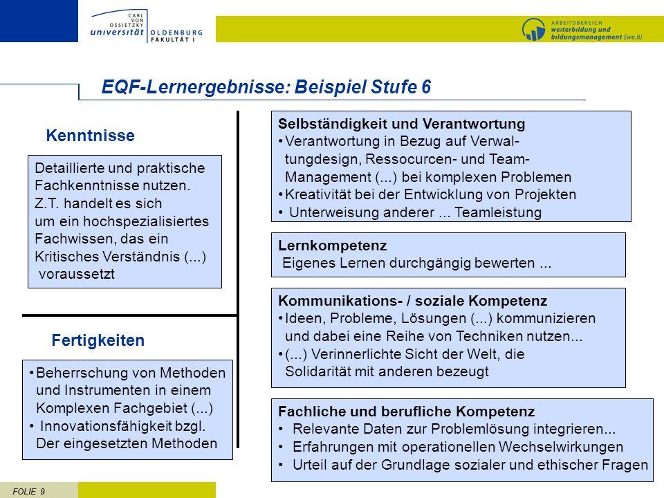 EQF-Lernergebnisse: Beispiel Stufe 6