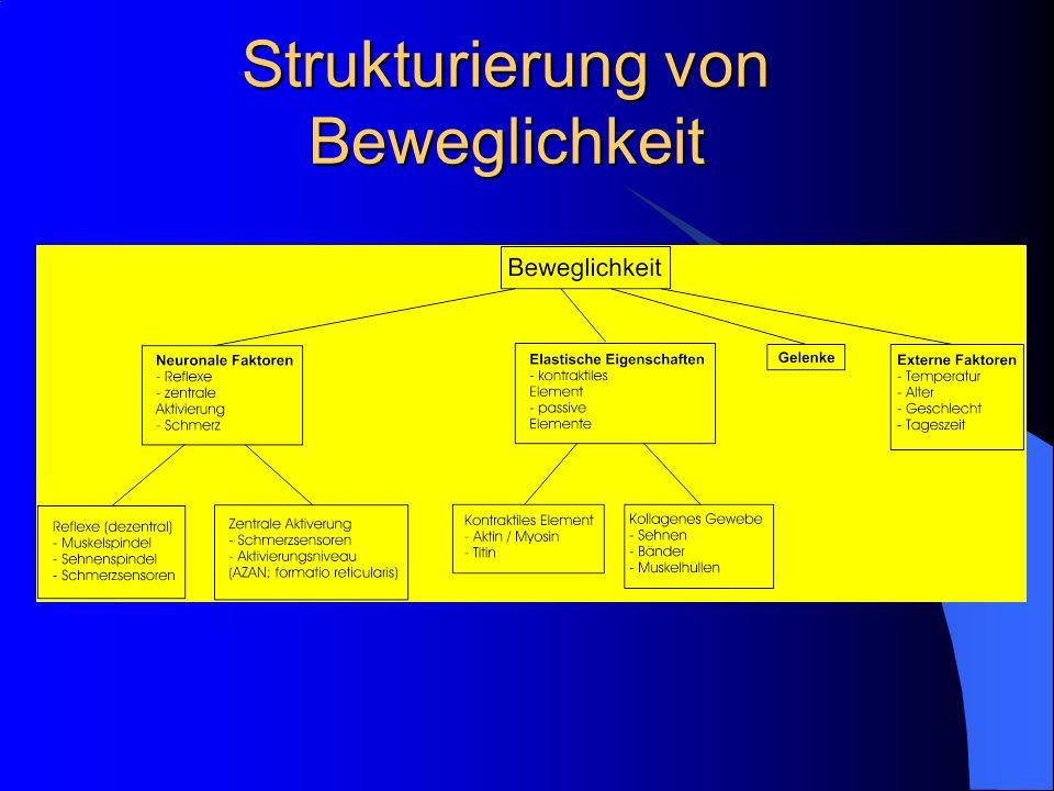 Strukturierung von Beweglichkeit