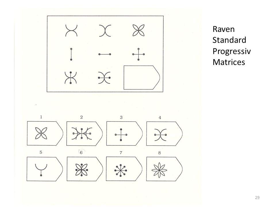 Raven Standard Progressiv Matrices