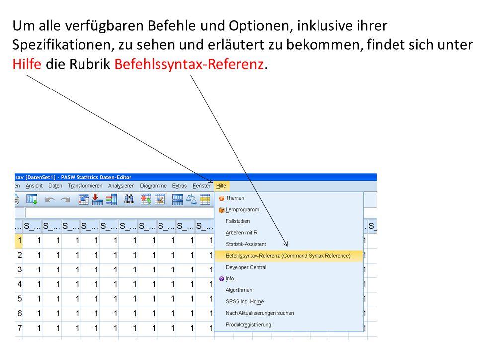 Um alle verfügbaren Befehle und Optionen, inklusive ihrer Spezifikationen, zu sehen und erläutert zu bekommen, findet sich unter Hilfe die Rubrik Befehlssyntax-Referenz.