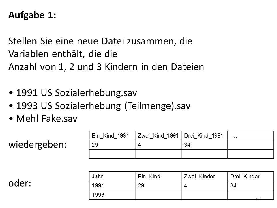 1993 US Sozialerhebung (Teilmenge).sav Mehl Fake.sav
