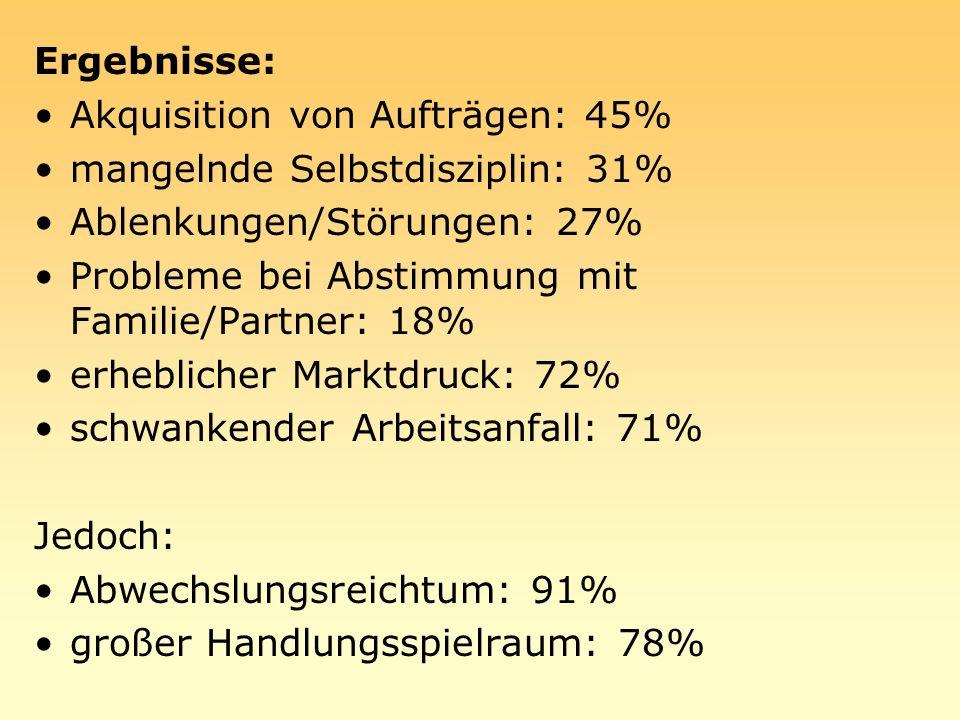 Ergebnisse: Akquisition von Aufträgen: 45% mangelnde Selbstdisziplin: 31% Ablenkungen/Störungen: 27%