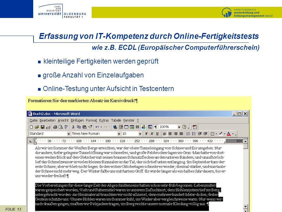 Erfassung von IT-Kompetenz durch Online-Fertigkeitstests