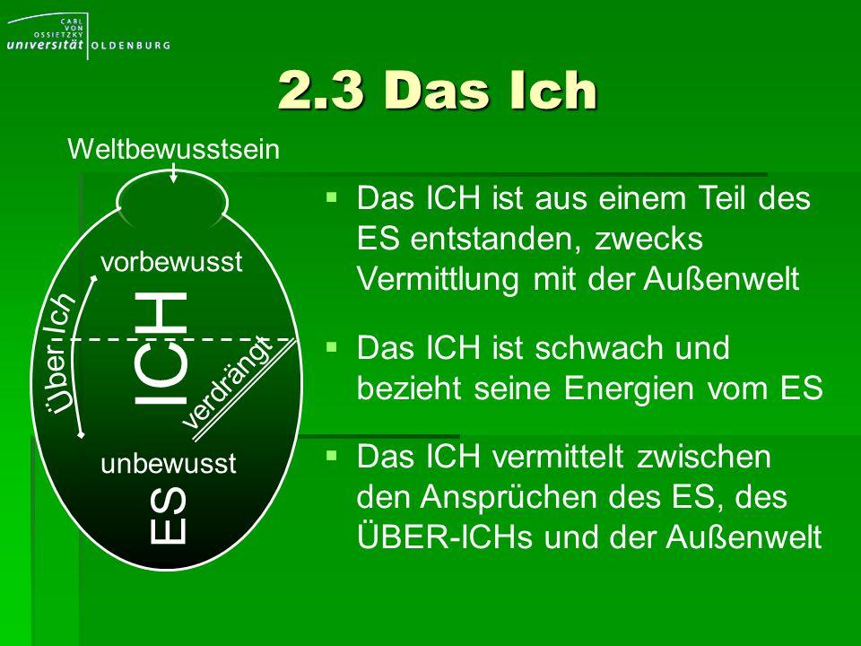 2.3 Das IchWeltbewusstsein. Das ICH ist aus einem Teil des ES entstanden, zwecks Vermittlung mit der Außenwelt.