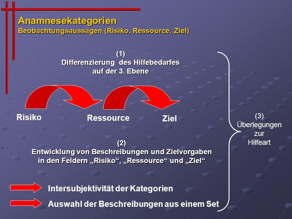 Differenzierung des Hilfebedarfes auf der 3. Ebene