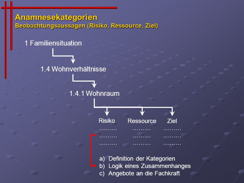 Anamnesekategorien Beobachtungsaussagen (Risiko, Ressource, Ziel)