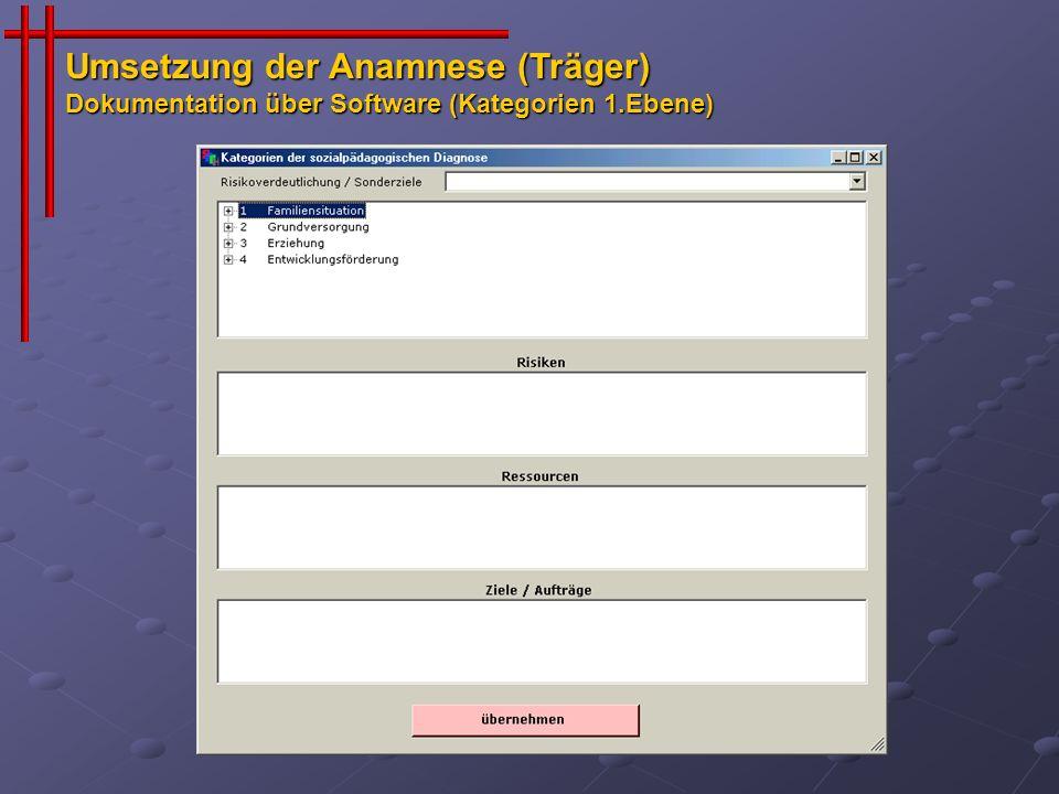 Umsetzung der Anamnese (Träger) Dokumentation über Software (Kategorien 1.Ebene)
